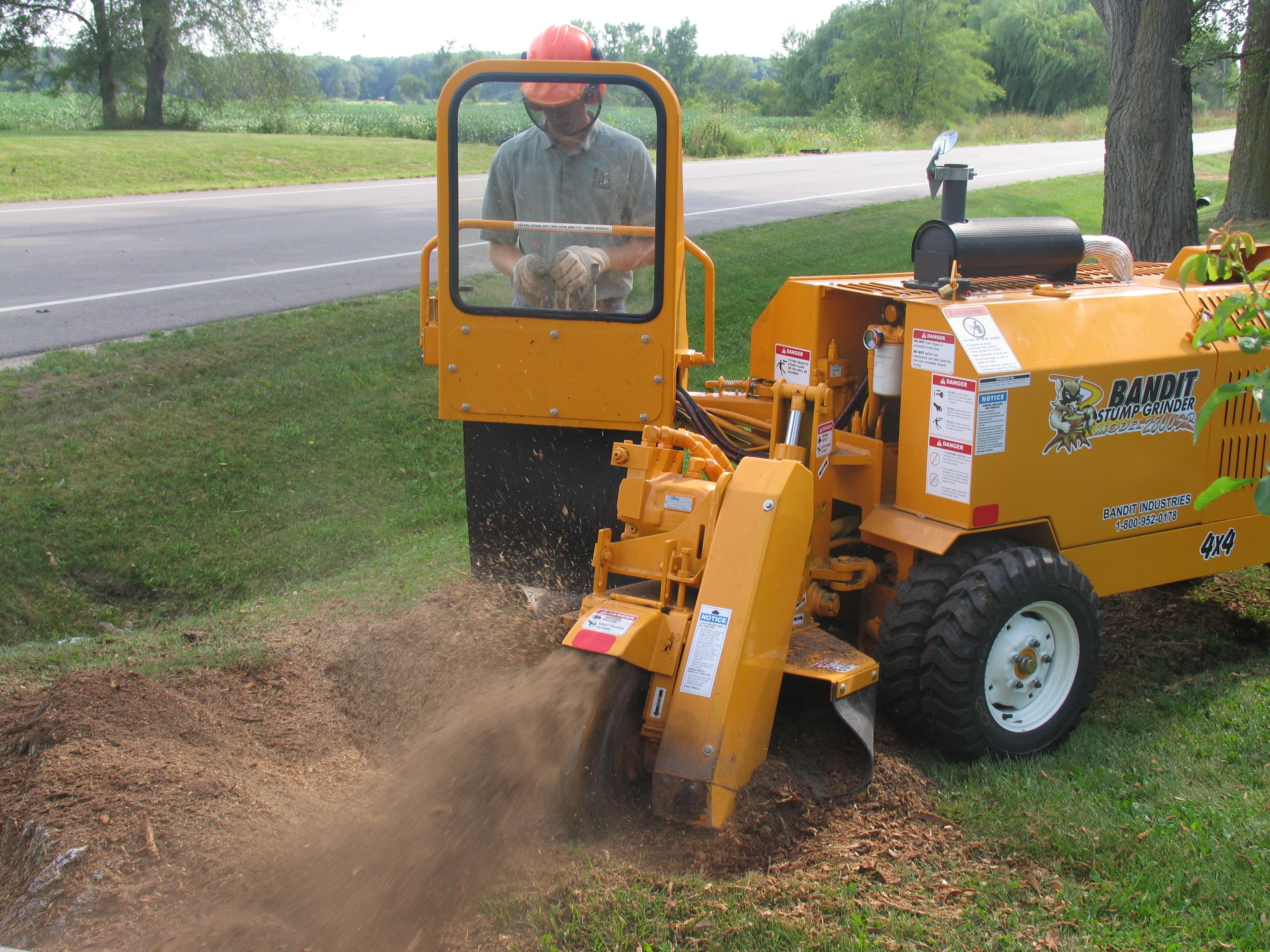 Stump Grinder removing tree stump